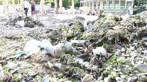 Сміття на пляжах Одеси