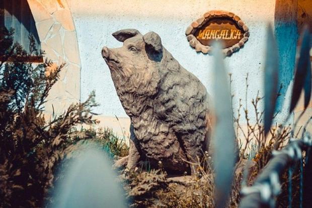 А це пам'ятник свині-мангалиці в Ботарі